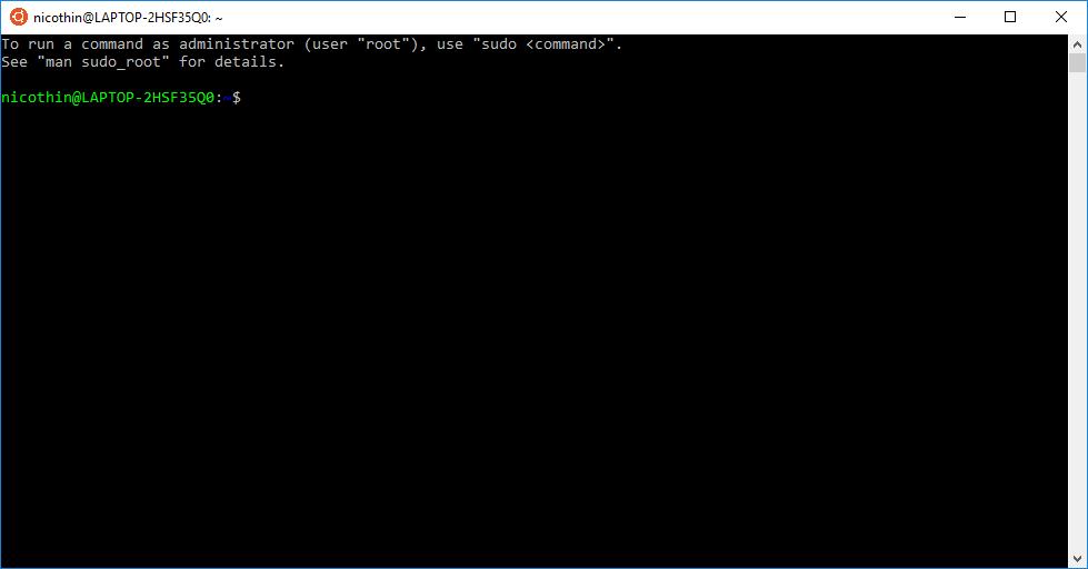 bash-терминал сразу после установки